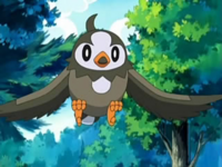 Ash Starly-1- (2 (21).png