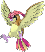 017Pidgeotto.png