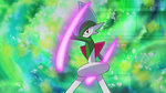 150px-Zoey Gallade Swords Dance.png