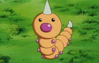 Anime Weedle.png